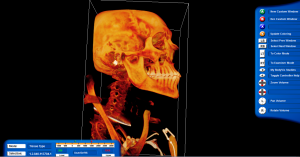 Biology BodyViz system used in anatomy