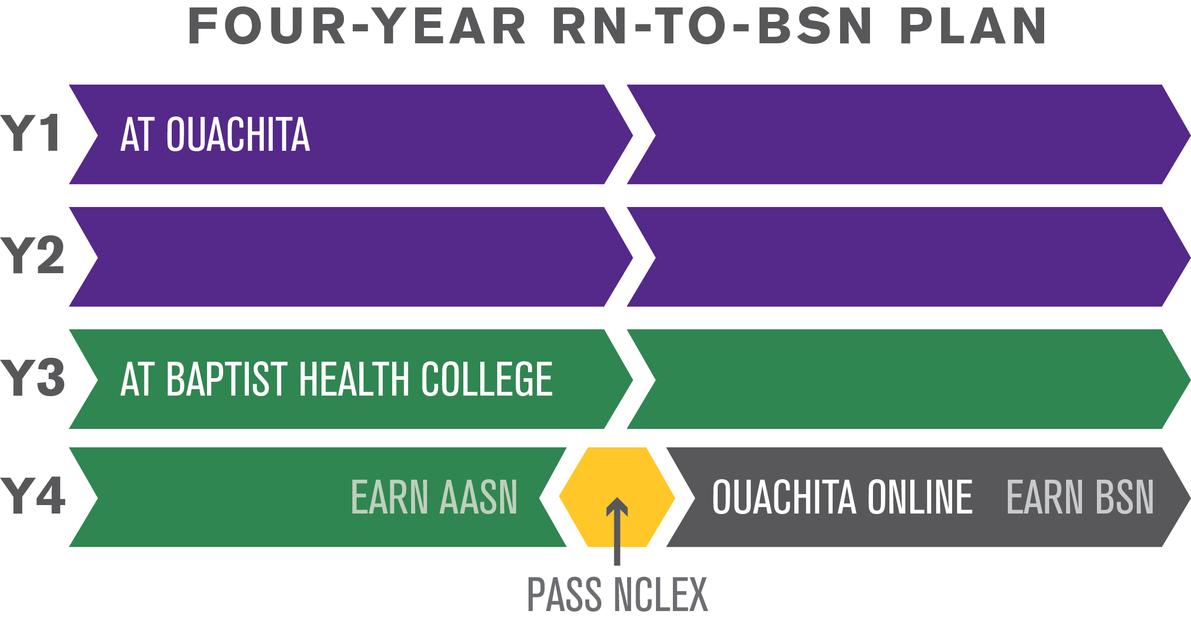RN to BSN year to year chart